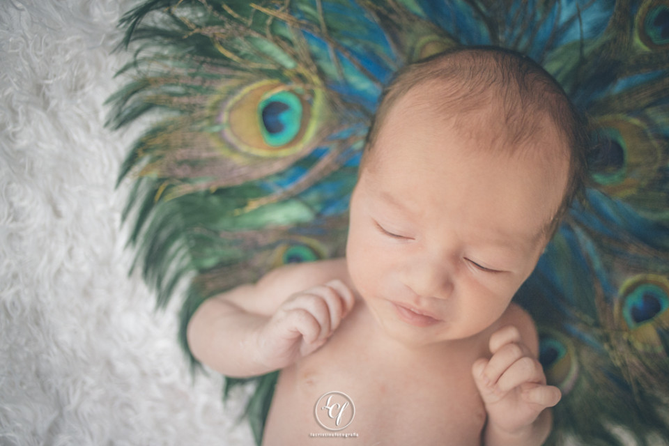 fotografía recién nacido :: fotografía bebé :: fotografía bebé barcelona :: reportaje recién nacido :: reportaje bebé barcelona :: sesión fotos recién nacido :: sesión fotos bebé