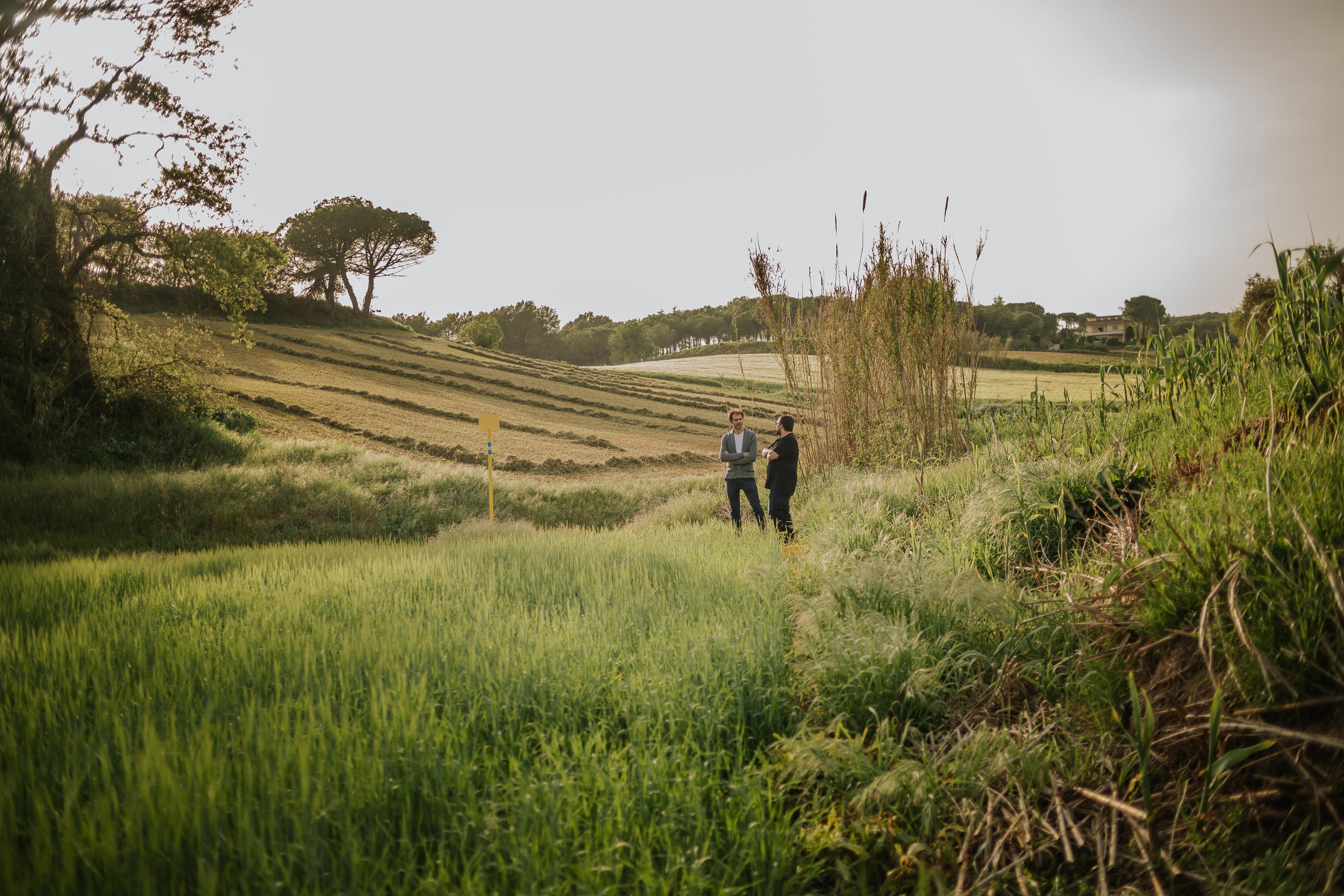 Fotógrafo familia Sant Cugat :: Fotógrafo familiar en el campo :: Barcelona photographer :: Fotógrafo Sant Cugat